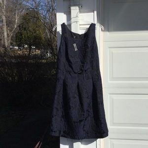 NWT Talbots Gorgeous Black With Blue Floral Dress
